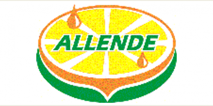 ALLENDE CUADRADO